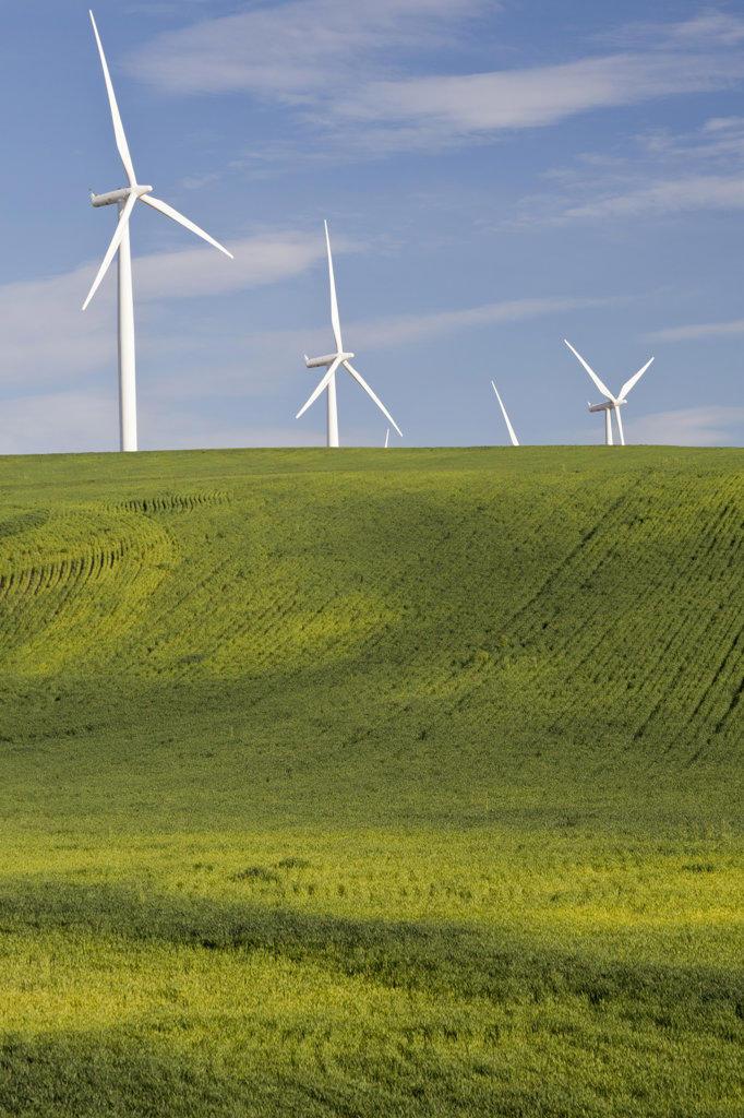 USA, Oregon, Wasco, Wind turbines : Stock Photo