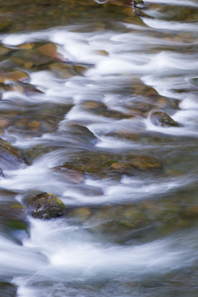 USA, Oregon, Columbia River Gorge, Eagle Creek Trail, Scenics view of flowing water : Stock Photo