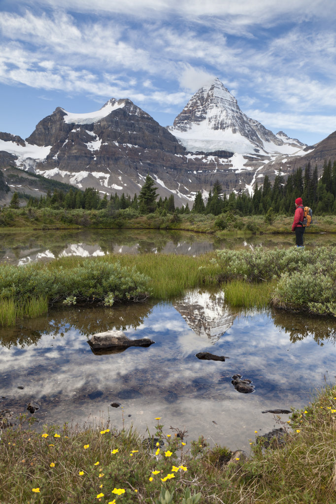 Stock Photo: 1482R-3000 Canada, Mount Assiniboine Provincial Park, Hilker looking at tarn at Magog Lake Meadows at sunrise