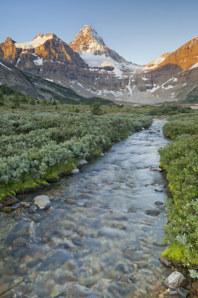 Stock Photo: 1482R-3010 Canada, Mount Assiniboine Provincial Park, Magog Creek and lake at sunrise
