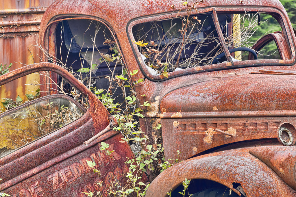Stock Photo: 1482R-3130 Abandoned truck, Kestner Homestead, Quinault Rainforest, Olympic National Park, Washington State, USA