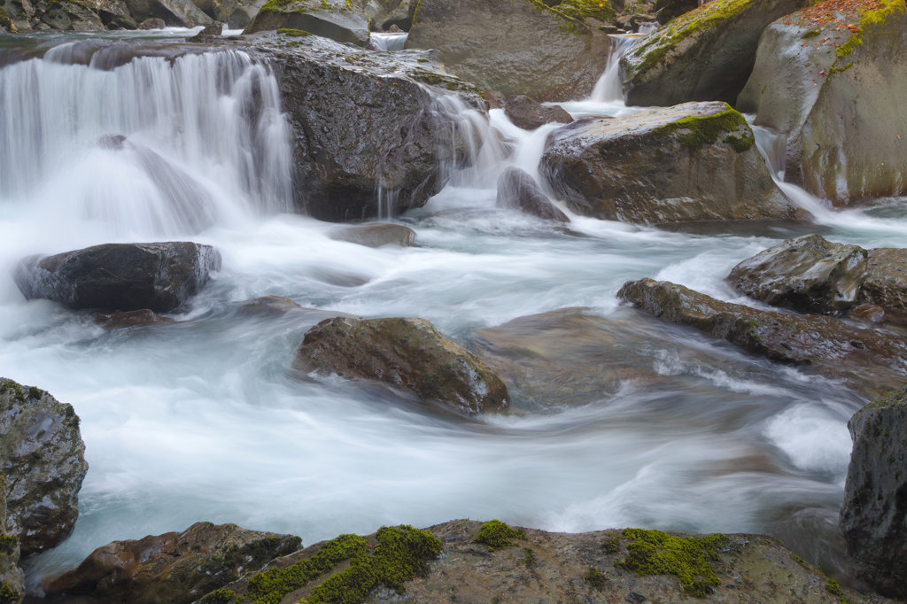 Stock Photo: 1482R-3154 Rapids in the North Fork Skokomish River, Washington State, USA