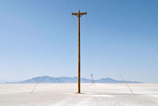 Telephone poles in a field, Bonneville Salt Flats, Utah, USA : Stock Photo