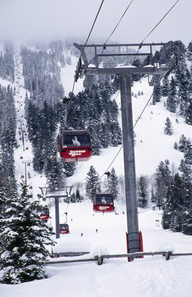 Overhead cable cars moving over a snow covered field, Jackson Hole, Wyoming, USA : Stock Photo