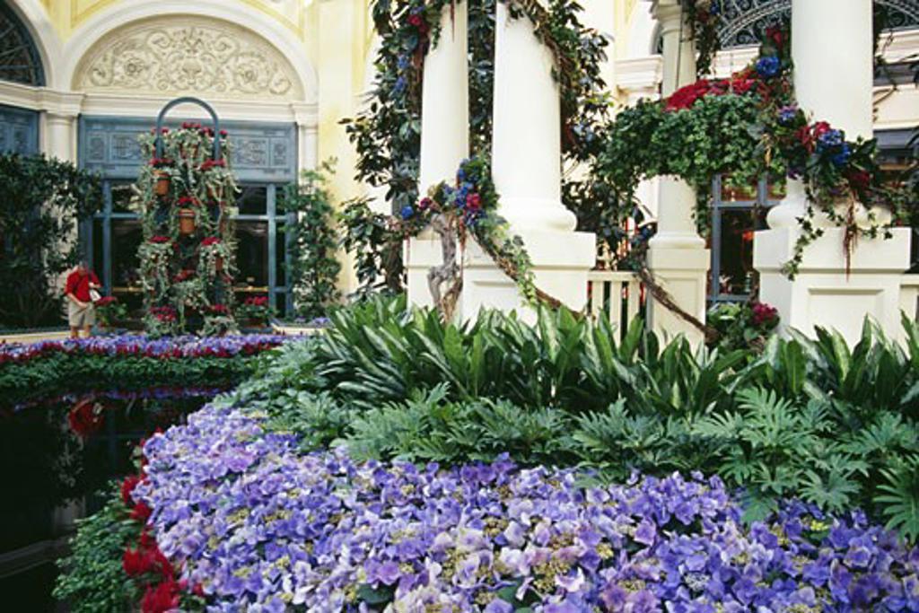 Stock Photo: 1486-1062 Garden of a hotel, Bellagio Resort And Casino, Las Vegas, Nevada, USA