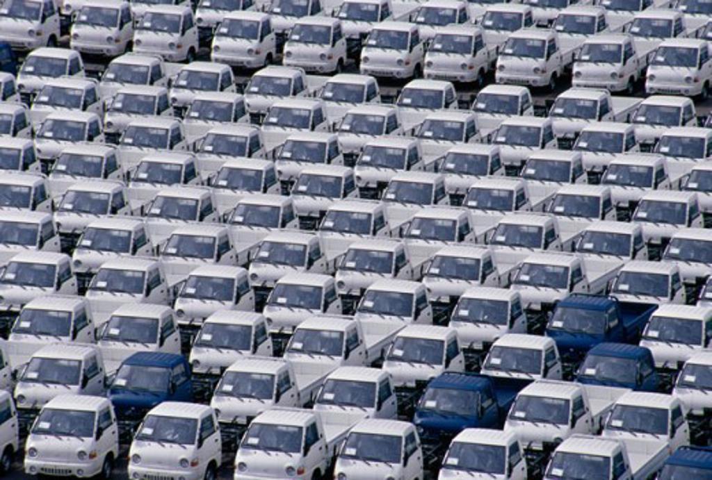 Mazatlan Mexico : Stock Photo