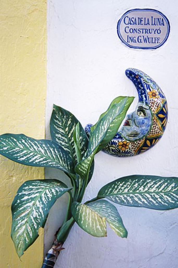 Stock Photo: 1486-1118 Showpiece on a wall, Puerto Vallarta, Mexico