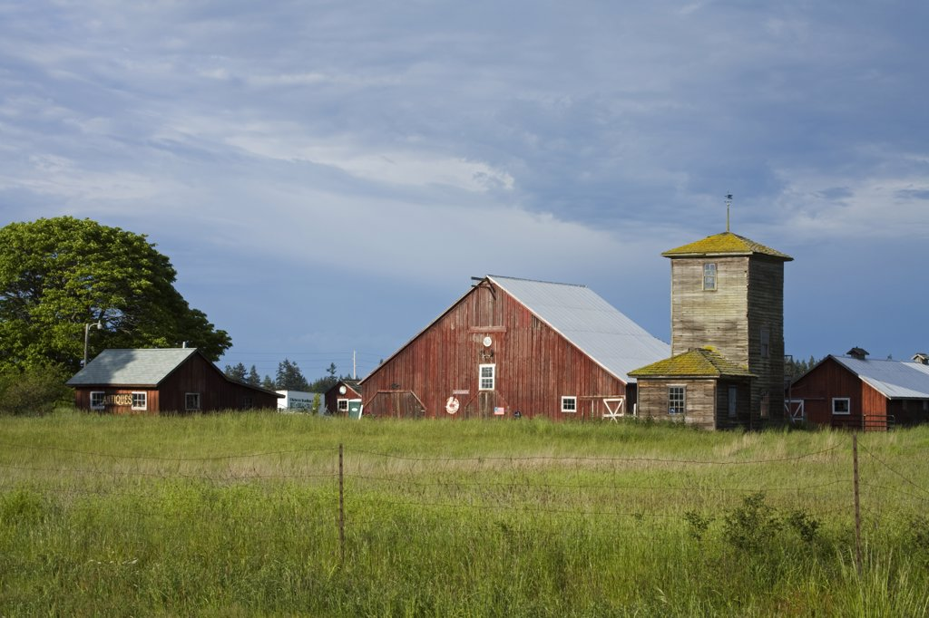 Stock Photo: 1486-11562C Barn in a field, Salmagundi Farm, Whidbey Island, Washington State, USA