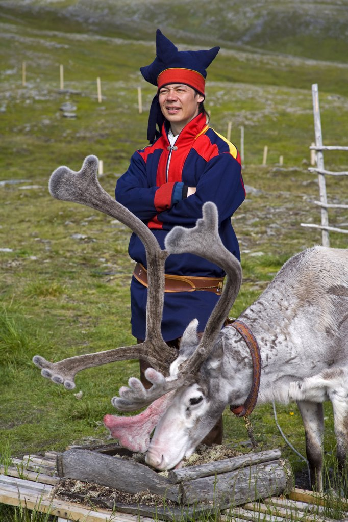 Sami tribal man standing beside a reindeer, Honningsvag, Mageroya Island, Nordkapp, Finnmark County, Norway : Stock Photo