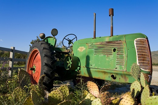 Abandoned tractor in a field, Temecula, Wine Country, California, USA : Stock Photo