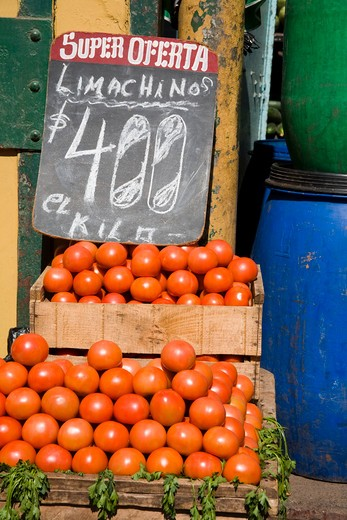 Tomatoes in a market stall, Cardonal Market, Valparaiso, Chile : Stock Photo