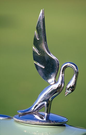 Stock Photo: 1486-1304 Hood ornament of a Packard car