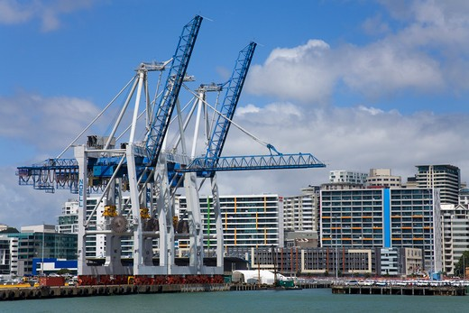 Cranes at a harbor, Bledsloe Wharf, Auckland, North Island, New Zealand : Stock Photo