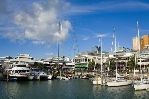 Stock Photo: 1486-13910 Boats at a harbor, Viaduct Harbour, Auckland, North Island, New Zealand