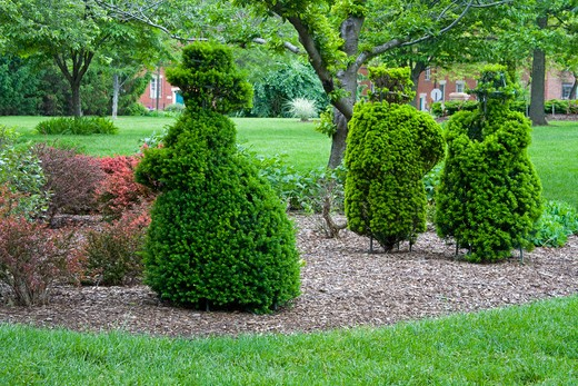 Stock Photo: 1486-13998 Topiary in a garden, Deaf School Park, Columbus, Ohio, USA
