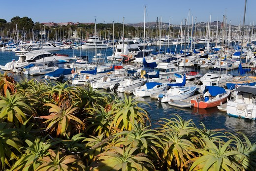 USA, California, Orange County, Dana Point Harbor, Yachts moored in marina : Stock Photo