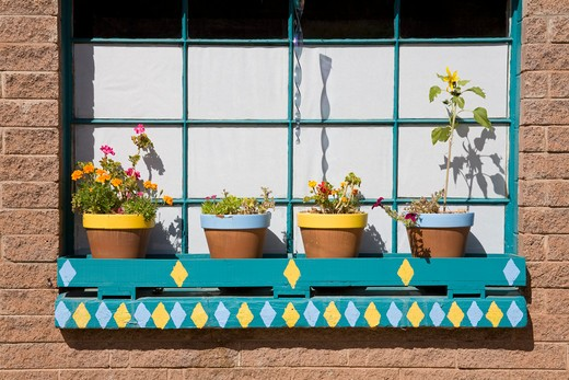 Stock Photo: 1486-14607 USA, New Mexico, Albuquerque, Jemez Springs, Art gallery, Potted plants at window sill