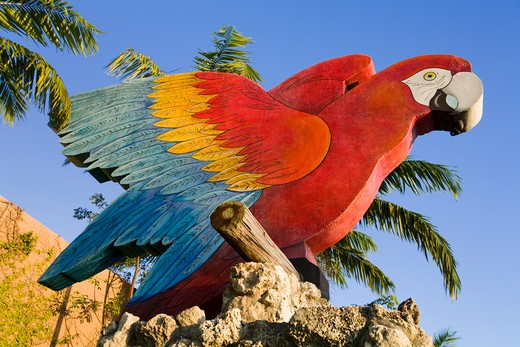 Stock Photo: 1486-15462 Parrot Jungle, Miami, Florida, USA