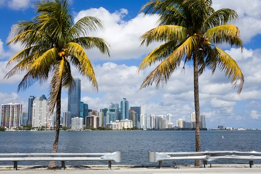 Stock Photo: 1486-15484 Miami skyline viewed from Key Biscayne, Miami, Florida, USA