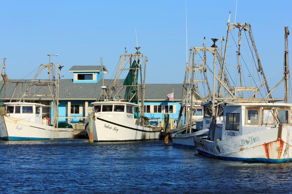 Shrimp boats at a harbor, Corpus Christi, Texas, USA : Stock Photo