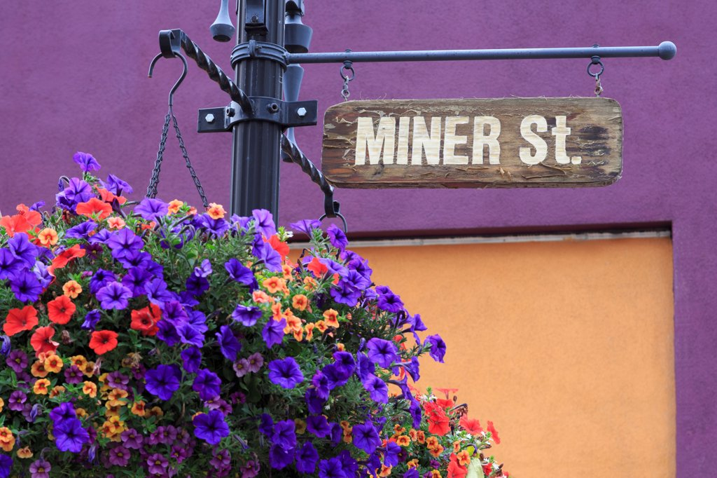 Stock Photo: 1486-16338 USA, Colorado, Idaho Springs, Flower basket on Miner Street