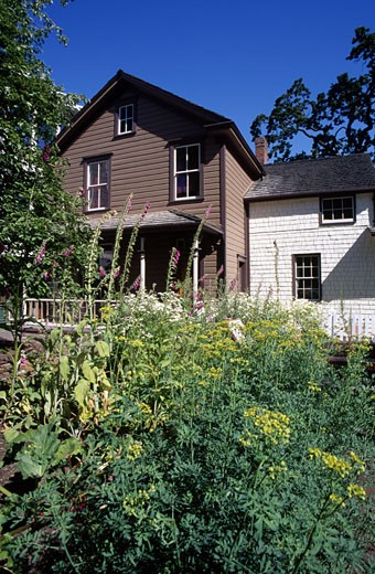 Stock Photo: 1486-1971 Canada, British Columbia, Victoria, Helmcken House, facade with flowers on the foreground