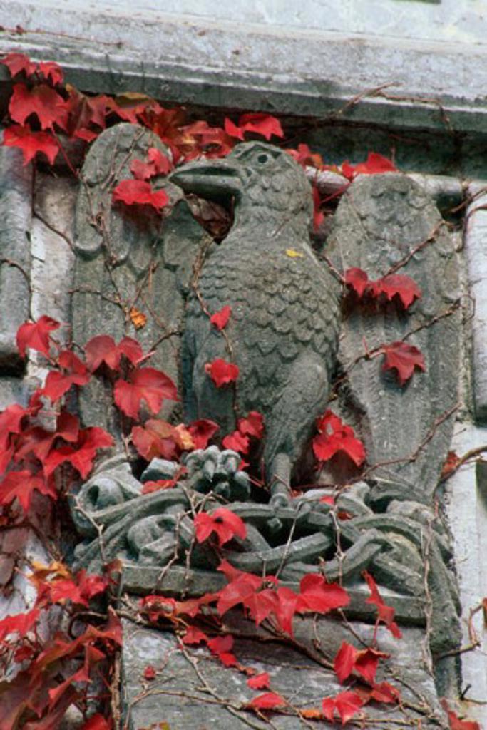 Stone carved statue of a bird, Adare, Ireland : Stock Photo