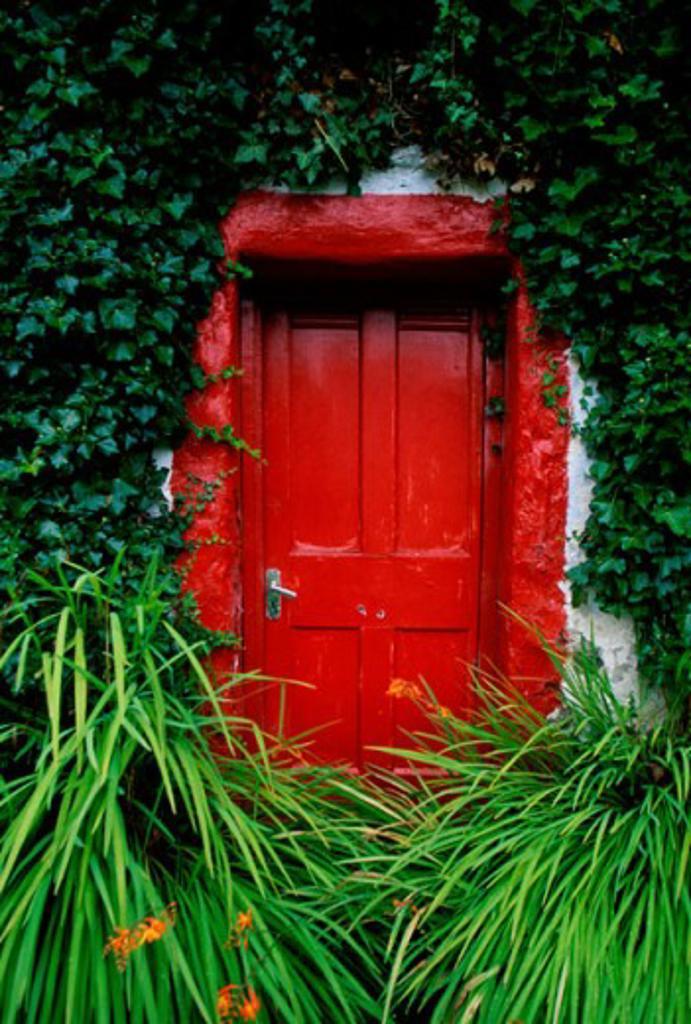 Front door of a house, Ireland : Stock Photo