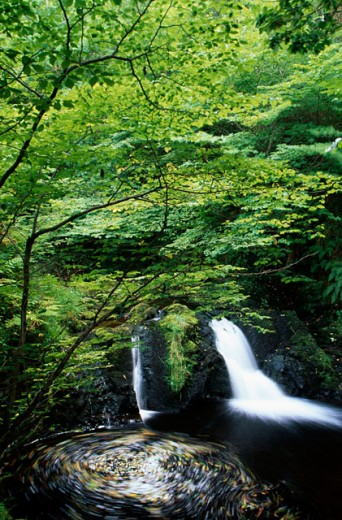 Stock Photo: 1486-2708 High angle view of a waterfall, Glenariff Forest Park, County Antrim, Northern Ireland