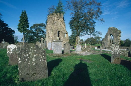 Tombstones in a cemetery, Knocktopher Abbey, Knocktopher, County Kilkenny, Ireland : Stock Photo