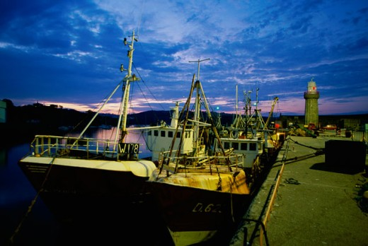 Stock Photo: 1486-3188 Fishing boats moored in a harbor, Dunmore East Harbor, Ireland