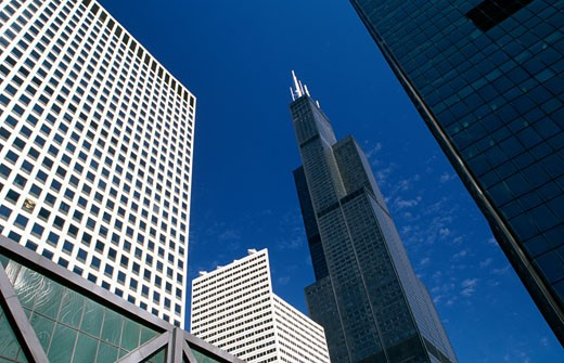 Skyscrapers in a city, Sears Tower, Chicago, Illinois, USA : Stock Photo