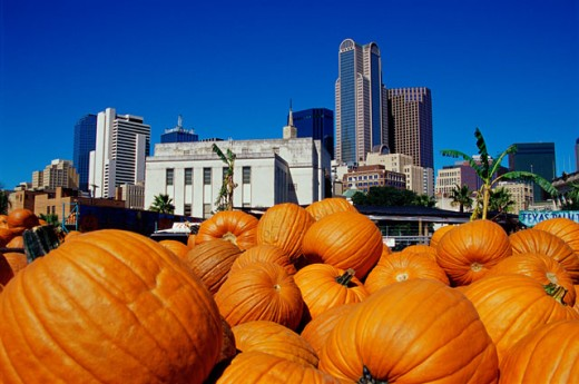 Pumpkins at the Dallas Farmers Market, Dallas, Texas, USA : Stock Photo