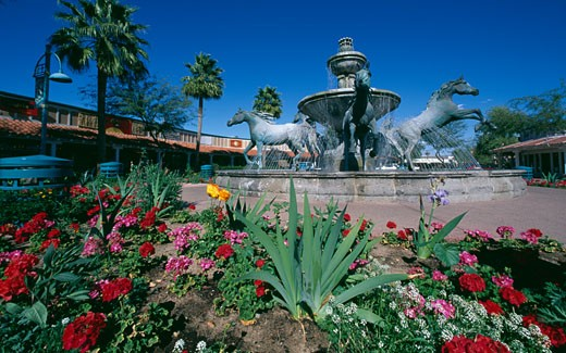 Stock Photo: 1486-6295 Flowers in front of a fountain, Scottsdale, Arizona, USA