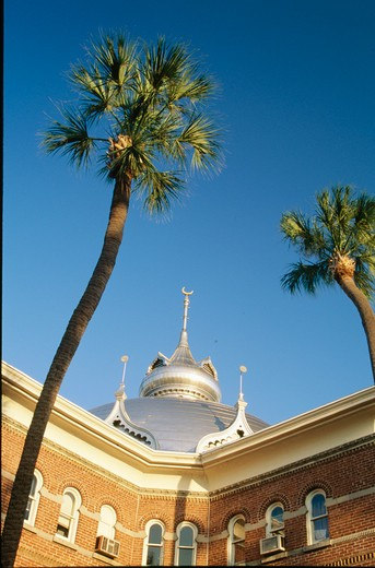 USA, Florida, Tampa, University of Tampa and palm trees against blue sky : Stock Photo