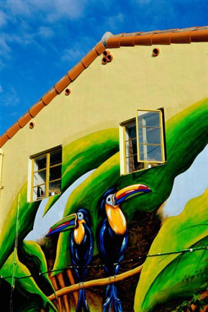 Tropical mural of toucans, Miami, Florida, USA : Stock Photo
