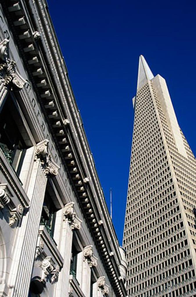 Stock Photo: 1486-7642 Buildings in a city, Transamerica Pyramid, San Francisco, California, USA