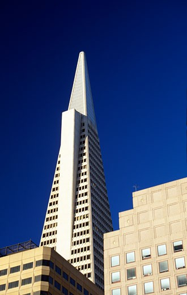 Stock Photo: 1486-7643 Buildings in a city, Transamerica Pyramid, San Francisco, California, USA