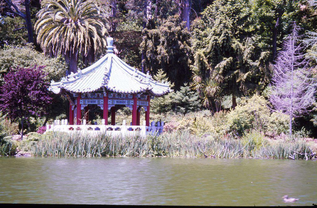 Stock Photo: 1486-7756 USA, California, San Francisco, Golden Gate Park