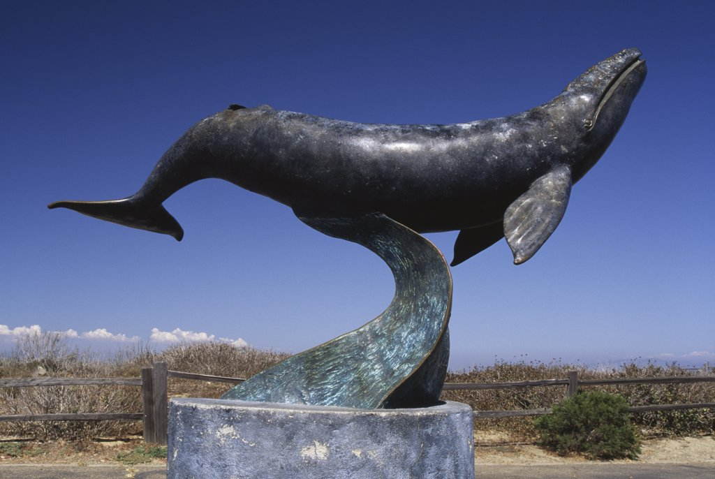 Stock Photo: 1486-8457 Gray Whale Statue