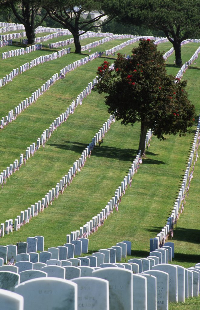 Stock Photo: 1486-8479 Fort Rosecrans National Cemetery