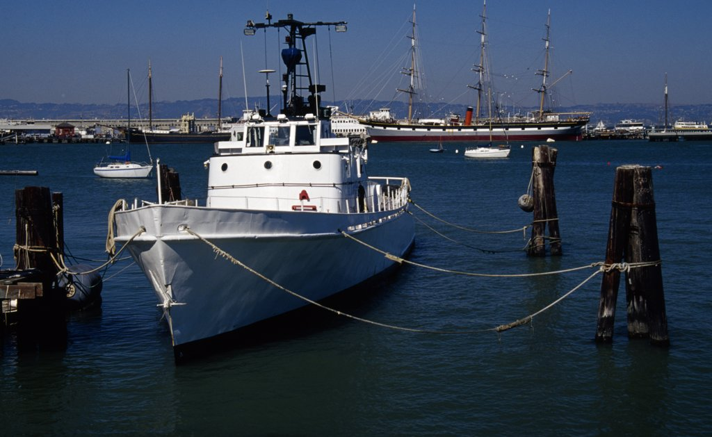 Boats moored at a harbor, Fisherman's Wharf, San Francisco, California, USA : Stock Photo