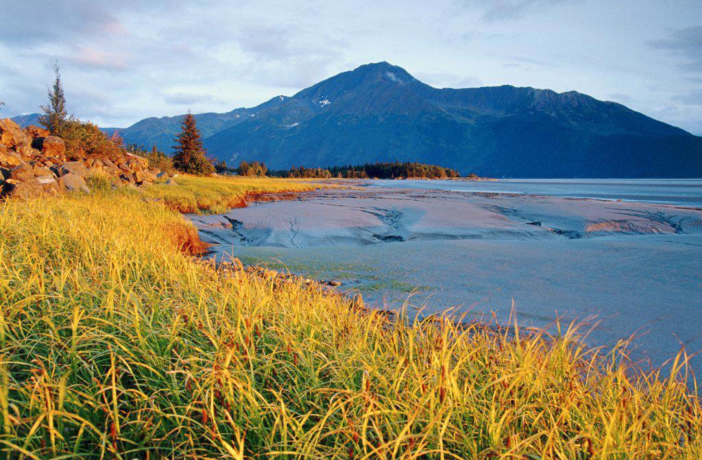 Stock Photo: 1486-8780 Panoramic view of the Cook Inlet, Alaska, USA