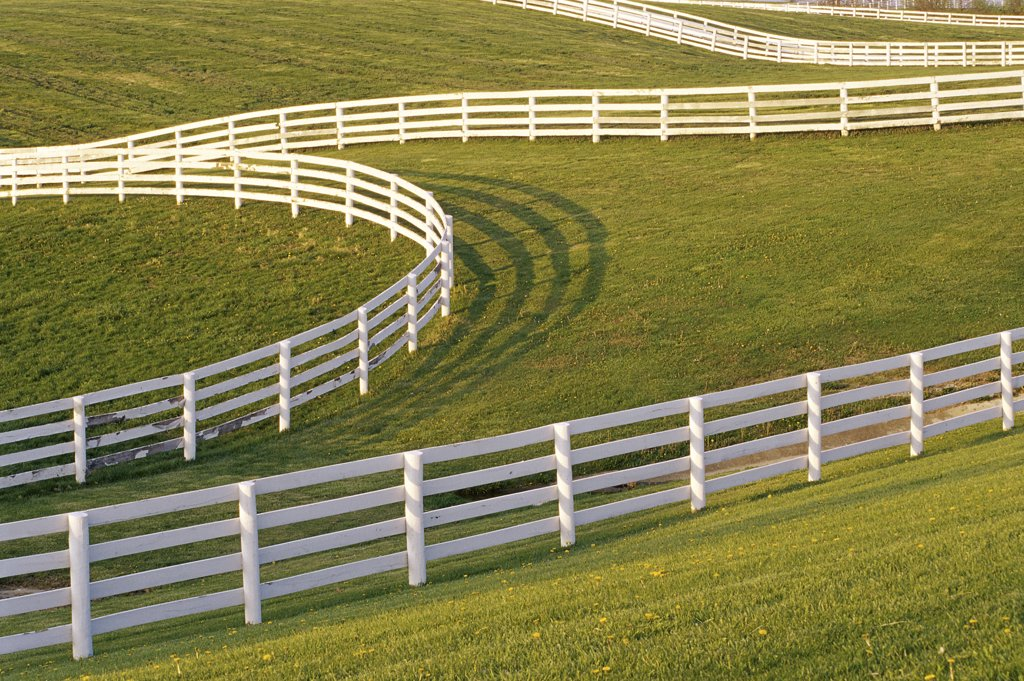 Stock Photo: 1486-9406 High angle view of fences on a landscape, Lexington, Kentucky, USA