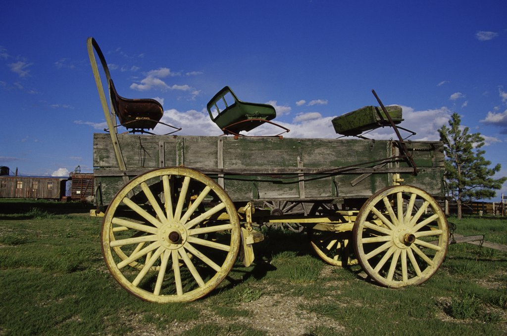 Stock Photo: 1486-9610 Horse cart in a field, 1880 Town, South Dakota, USA