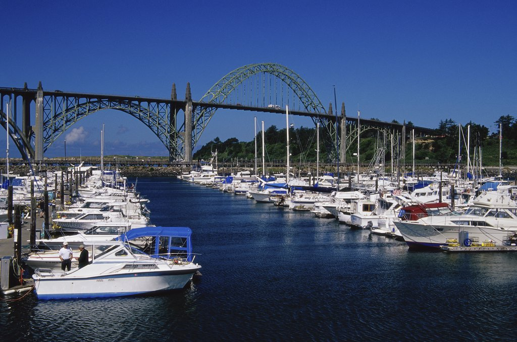 Stock Photo: 1486-9739 Boats docked in a harbor, Newport, Oregon, USA