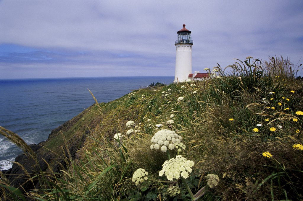 Lighthouse on a cliff, North Head Lighthouse, Washington, USA : Stock Photo