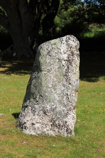 Standing stone in a field, Clava Cairn, Clava, Inverness, Highlands Region, Scotland : Stock Photo