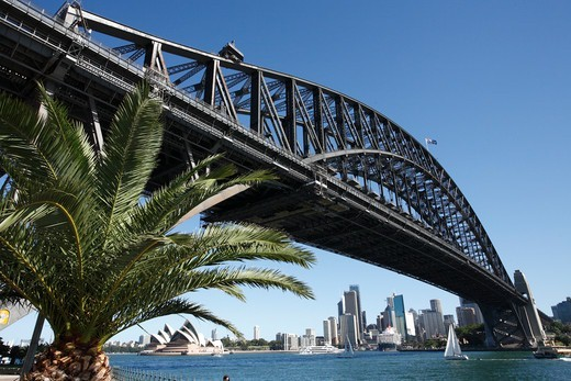 Stock Photo: 1488-1327 Australia, Sydney, View of Harbour Bridge and Opera House and City from North Sydney Olympic Drive)