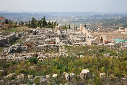 Stock Photo: 1488-925 Ruins of an ancient Greek city, Byllis, Illyria, Albania